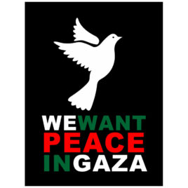 We Want Peace In Gaza Poster
